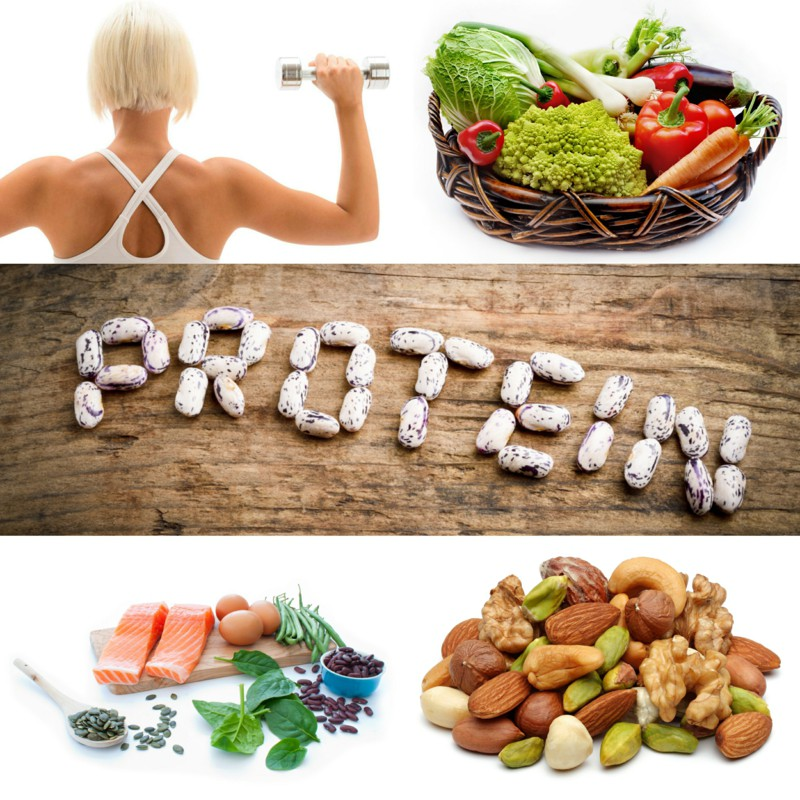 11 Sources of Plant Protein - Abu Dhabi Personal Trainers